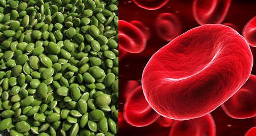 Giúp điều hòa đường huyết